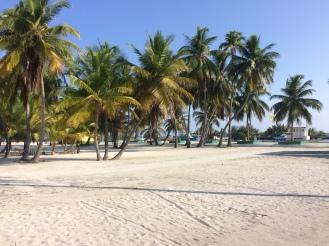 Maldives_Local Island