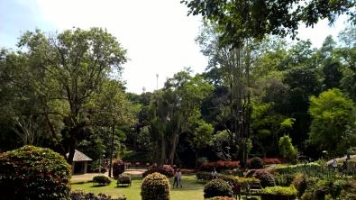 Chiang Rai (34)