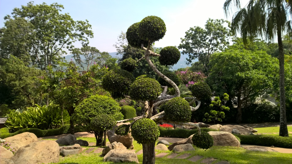 Chiang Rai (36)