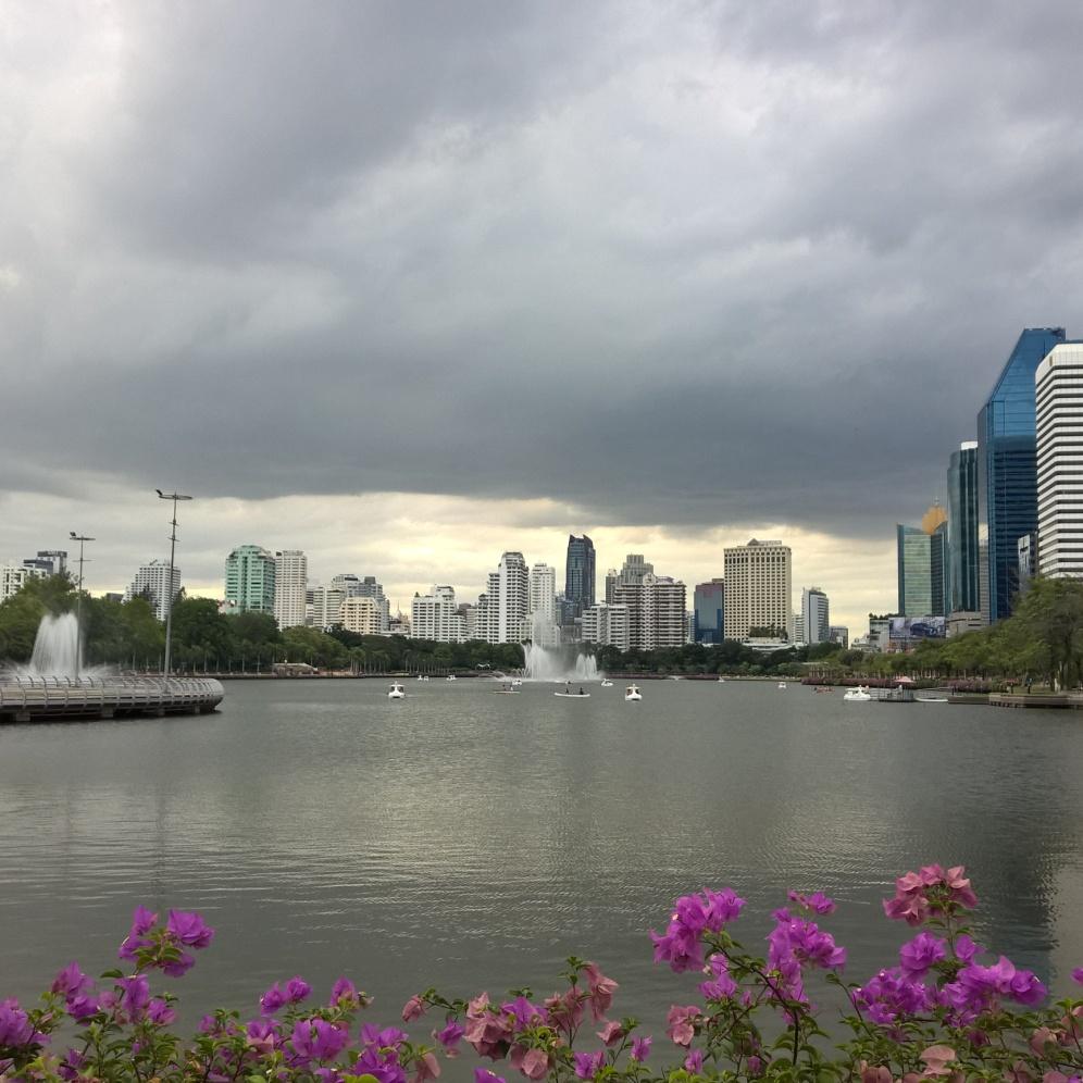 متنزه بنجاكيتي ويظهر في الخلفية فندق ويستن